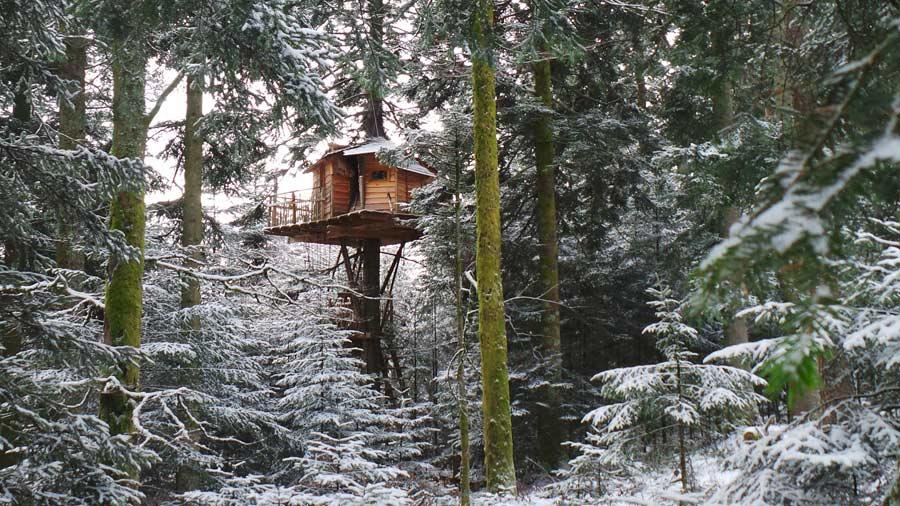 Haut perch une cabane dans les arbres de la for t for Acheter cabane dans les arbres
