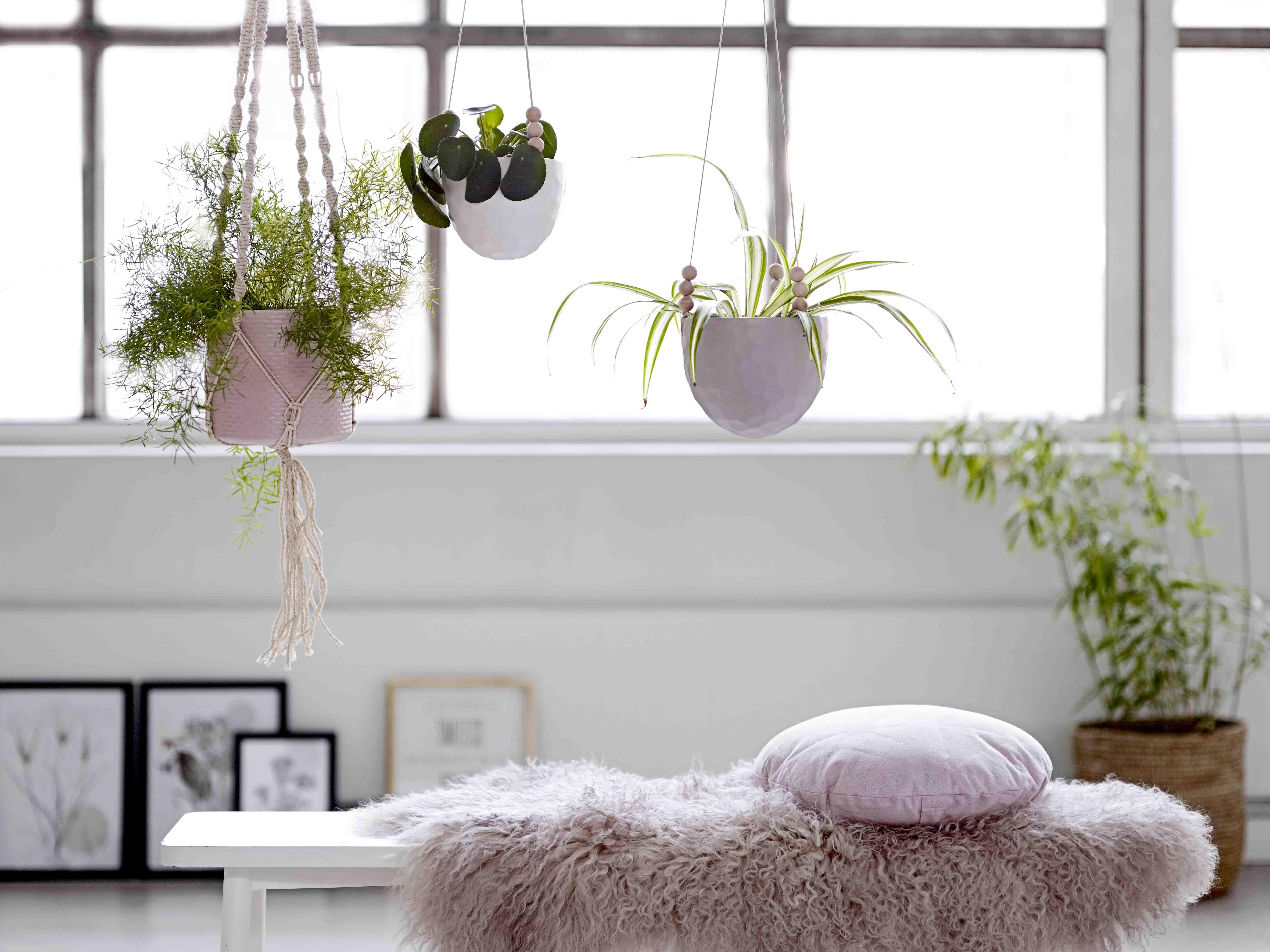 o trouver des pots pour suspendre les plantes. Black Bedroom Furniture Sets. Home Design Ideas